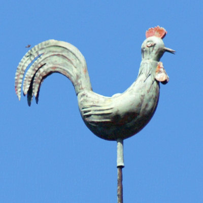 Le coq du clocher de la mairie d'Oricourt, photo J. Masset
